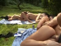 Naughty picnic for the four