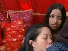 Tight Philippine Bitches Share Big White Hard On